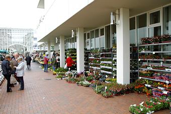 Marktstand der Gärtnerei Scharf auf dem Titusforum am Nordwestzentrum in Frankfurt am Main